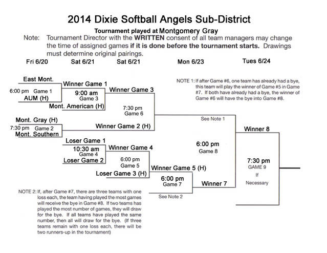 2014 Angels Sub-District Tournament