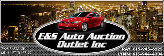 E&S Auto Auction Outlet Inc.