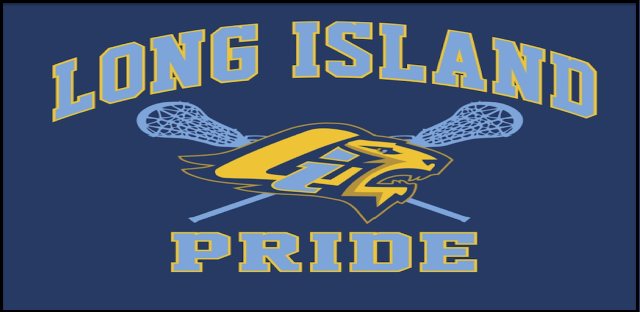 LI Pride Logo Sticks