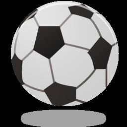 Sacred Heart Bayside CYO Fall Soccer