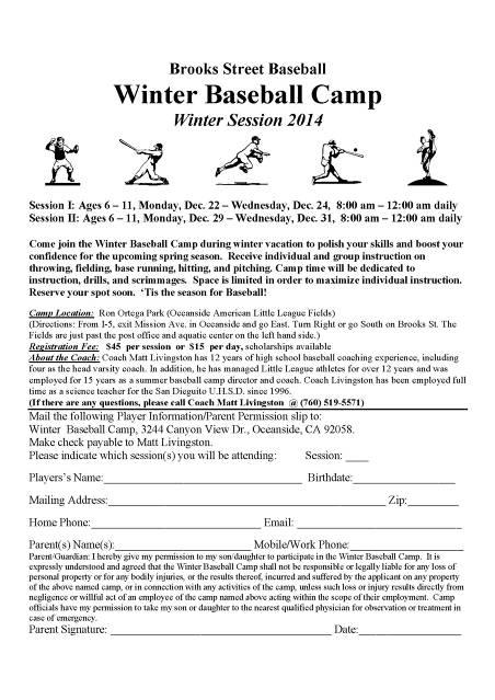 Winter Baseball Camp