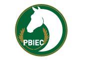 Chartity Challenge PBIEC